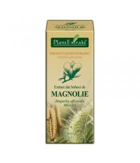 Extract Magnolie x 50 ml