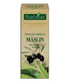 Extract mladite maslin x 50ml (PLX)